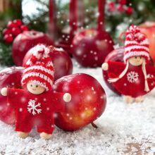 Weihnachten mit Schnupperkur