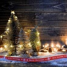Böhmische Weihnachten mit Mini Wellness & Vital (Mini Kur)